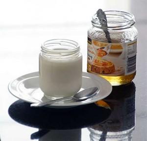 Maken van yoghurt at Home - zelfgemaakte yoghurt